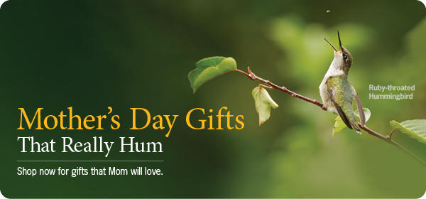 Mother's Day Hummingbird Sale